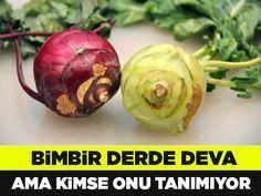 Bin derde deva mucizevi sebze! Birkaç yıl önce belkide adından bile haberdar olmadığımız bu sebze, Türkiye'de yeni yeni popülerleşmeye ve üretilmeye başladı. #alabaş #kohlrabi