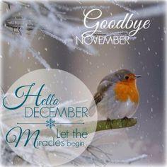 Image result for goodbye november hello december