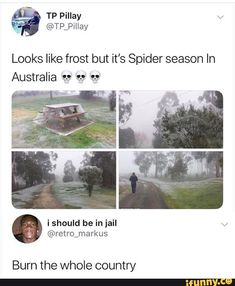 Picture memes 3 comments — iFunny - Looks like frost but it's Spider season In Australia Burn the whole country – popular memes on - Really Funny Memes, Stupid Funny Memes, Funny Relatable Memes, Funny Tweets, Funny Posts, Funny Spider Memes, Funny Troll, Funny Cute, Haha Funny