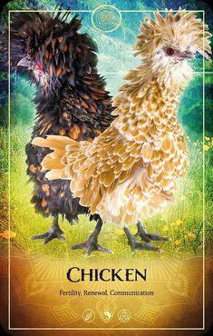 Animal Spirit Guides, Your Spirit Animal, My Spirit, Intuitive Empath, Animal Symbolism, Oracle Tarot, Power Animal, 12 Zodiac Signs, Angel Cards