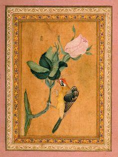 Bird Perching on a Rose Twig - Miniatures, Gouache - Iran, 18th century - Album of Polovtsov