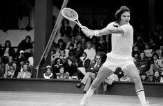 adidas Originals adidas Originals Hardcourt Hi Tennis Shoes White Black Gold from Champs Sports | Martha Stewart