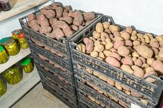 Keep vegetables, like potatoes, in crates so they can breath.