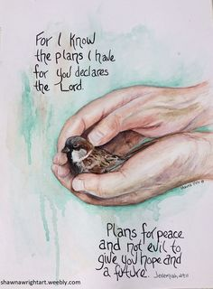 Shawna Wright Art Jeremiah Bird in hands Cards and prints available Bible Verse Art, Bible Verses Quotes, Bible Scriptures, Faith Quotes, Scripture Pictures, Healing Scriptures, Memory Verse, Healing Quotes, Heart Quotes