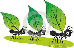 Ant Carrying Leaf Stock Illustrations – 21 Ant Carrying Leaf Stock Illustrations, Vectors & Clipart - Dreamstime