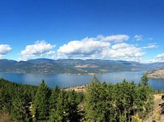 How to spend 48 hours in Vernon in spring