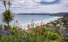 5. Waiheke, New Zealand | These island destinations, voted tops by T+L readers, will inspire some serious wanderlust.
