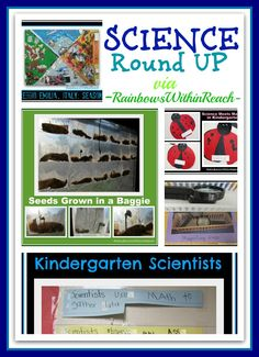 {Science for Young Children}
