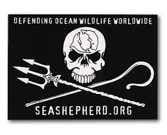 Sea Shepherd Conservation Society.  Bringing fear into the hearts of pirate whalers, dolphin killers and seal slaughterers everywhere.