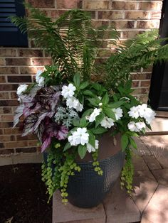 My own creation. Patio Plants, Outdoor Planters, Garden Planters, Outdoor Gardens, Garden Shrubs, Garden Yard Ideas, Lawn And Garden, Garden Projects, Container Flowers