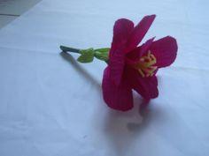 DIY Flowers & Bows : DIY Paper Flower