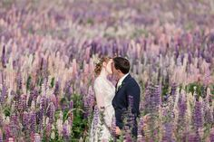 An epic Lake Tekapo wedding, surrounded by mountain views and lupins at the height of spring! So many colourful summer blooms created the backdrop for so many bridal portraits! Wedding Vendors, Weddings, Love Moves, Lake Tekapo, Anna, Bride Groom, Wedding Bride, Bridal Portraits, Mountain View