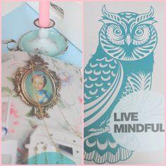 love that owl!