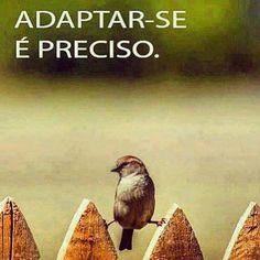 Adaptar-se