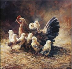 Mother Hen by Laurie Snow Hein Farm Paintings, Animal Paintings, Animal Drawings, Chicken Painting, Chicken Art, Duck Pictures, Pictures To Draw, Drawing Pictures, Farm Art