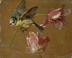 Alexandre-François Desportes Two Tulips and a Bluebird 18th century