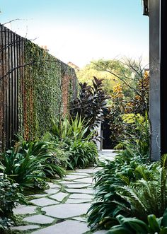 Entry into the Winter Street Residence with mixed plantings to change through the seasons by B.E Arrchitecture