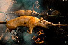 Babi Guling Indonesian Cuisine, Balinese, Paradise, School, Food, Eten, Indonesian Food, Schools, Balinese Cat