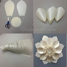 Tutorial #paperart #eventbackdrop #eventdesign #art #handmade #paperartist #interiordecor #weddingdecor  #handmadeisbetter  #paperflowers #paperflowerwall  #flowersofinstagram #flowerstagram #flowerbackdrop #eventdecor  #partyplanner #event #eventplanner #poshpaperflowers #partyplanners #minnesotaartist #luxurywedding #fivestarwedding #photography #minnesotawedding #minneapoliswedding #houstonweddings