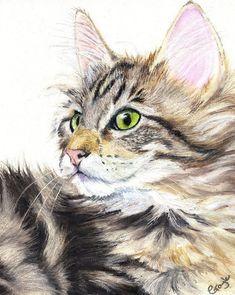 Tabby Cat in Oil Pastel Watercolor Cat, Watercolor Animals, Animal Paintings, Animal Drawings, Pinturas Disney, Gatos Cats, Cat Sketch, Cat Drawing, Cats And Kittens