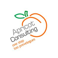 Apricot Consulting http://www.apricotconsulting.am/