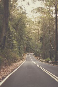 Sydney - Australia I can imagine driving down a road like this, and it would be perfect. Places To Travel, Places To See, Beautiful Roads, On The Road Again, Winding Road, Perfect World, Sydney Australia, Wonders Of The World, Adventure Travel