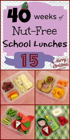 Week 15: 40 Weeks of Nut Free Kids School Lunches