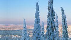 Lapland – The North Of Finland | VisitFinland.com