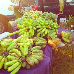 Bananas lots of bananas