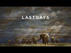AN ELEPHANT DIES EVERY 15 MINUTES. WILD ELEPHANTS COULD BE EXTINCT IN 11 YEARS. STOP THE VIOLENCE. [WATCH] Kathryn Bigelow On Elephant Poaching In 'Last Days Of Ivory' | Deadline