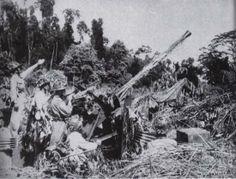 Dien Bien Phu 1954 - viet AAG 37 mm, pin by Paolo Marzioli