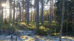 KG Hammar, Imri Sandströmd, Religion and Art www.annakarinsartandplej.blogspot.com