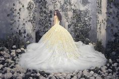 Disney Princess Style Ball Gown  Amazing Gowns : Photo