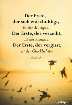 Image could contain: bird, sky and text - .- Bild könnte enthalten: Vogel, Himmel und Text – Image could contain: bird, sky and text – - Spiritual Needs, Funny Birds, True Words, Funny Quotes, Images, About Me Blog, Told You So, Wisdom, Sky