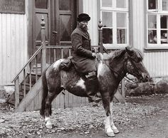 Icelandic horse from the last century