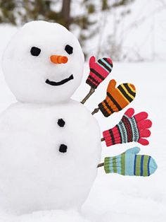 Snow has finally arrived in west Michigan and I am so happy! I love a fresh white snow. And yes, I may be the only one who loves snow, lol. I Love Snow, I Love Winter, Winter Fun, Winter Colors, Noel Christmas, Winter Christmas, Christmas Colors, Winter Schnee, Snow Sculptures