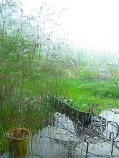 rain on window pane | Rain-on-the-Terrace ⓒ Michaela at TGE