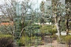Galeria - O Jardim Australiano / Taylor Cullity Lethlean   Paul Thompson - 111