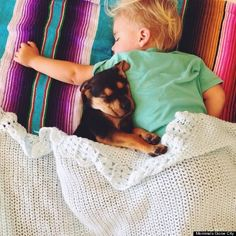 Theo and beau...sweetest thing ever.  Article shows a bunch of pictures of them napping together.