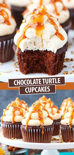 These Chocolate Turtle Cupcakes are made with a moist chocolate cupcake topped with caramel pecan frosting, caramel drizzle and some pecan crumbles! The flavors are perfection. Gourmet Cupcakes, Cupcake Recipes, Dessert Recipes, Turtle Cupcakes, Fun Cupcakes, Chocolate Turtles, Chocolate Cupcakes, Delicious Desserts, Yummy Food