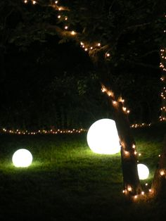 want these garden lights