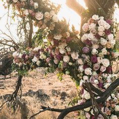 Go inside one couple's breathtaking destination wedding in Kenya. Infused with local traditions and style, this couple threw a ceremony and reception that spoke to the incredible backdrop. Safari Wedding, Fall Wedding, Dream Wedding, Wedding Groom, Wedding Ceremony, Wedding Coordinator, Wedding Planner, Destination Wedding, Alter Decor