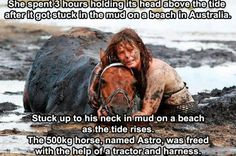 People helping animals ftw! Hats off to this girl.