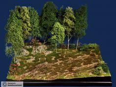Diorama Grundplatte 66/2, Wiese am Waldrand, 42x30 cm, 1:35