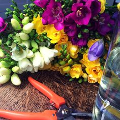 Want some colourful freesias to brighten up your home?  Get a subscription box! #freesias #fresh #subscriptionbox #birthday