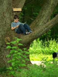 Reading spot leave me alone books, reading nook, outdoor rea Kids Reading, Love Reading, Reading Tree, Reading Books, Reading People, I Love Books, Books To Read, Outdoor Reading Nooks, New Foto