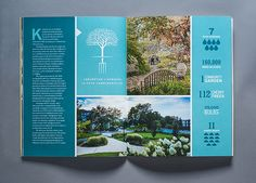 American University Annual Report 2012-2013 - Rena Münster | Graphic Design