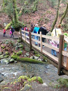 Tacoma Parks Free Family Nature Walk
