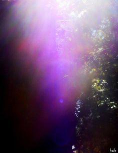 Amazing Energies by Kathy Jeffries