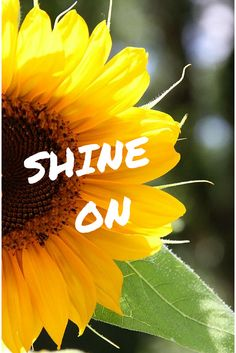 Stylish Momz: HOW TO BE HAPPY? SHINE ON